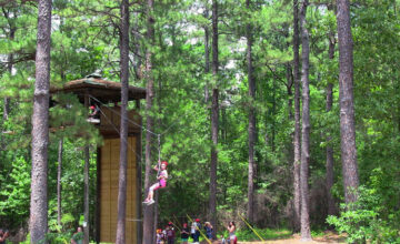 Nature Adventures: Pine Forest Ecology
