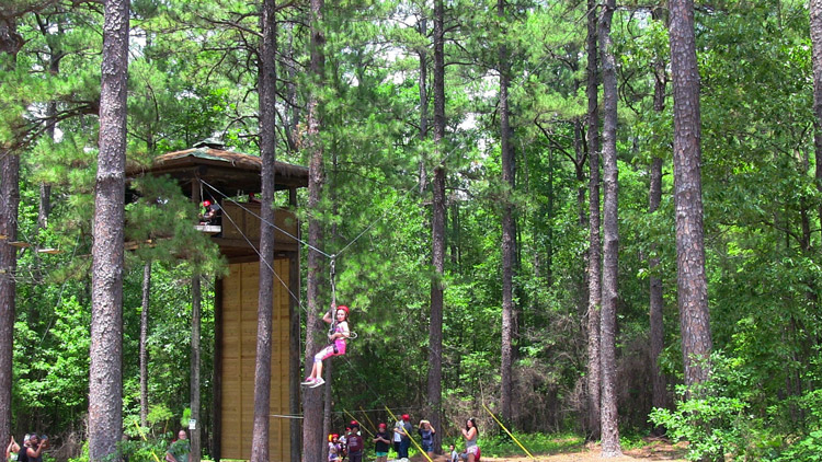 In this session, students will explore this unique pine forest ecosystem along with the help of a wildlife expert at Millstone 4-H Camp. Students will explore how and why the Longleaf Pine declined in the 20th century and how restoring these important trees helps many different species.