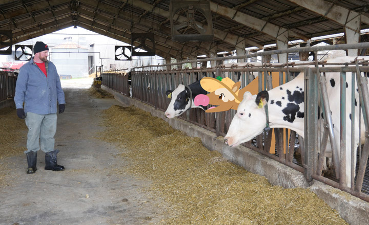 In this unit, youth trace Clover the Cow's growth from calf to dairy cow. Along the way, they learn about the dairy industry and how dairy foods can contribute to a healthy diet. The lessons in the unit feature dramatic roleplay, math, science, social studies, and literacy activities