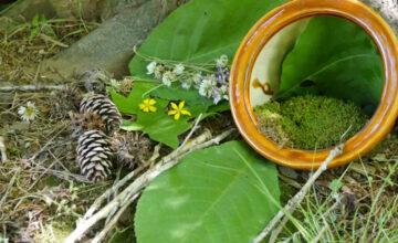 Nature Adventures: Nature Crafts